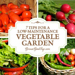 7 Tips for a Low-Maintenance Vegetable Garden